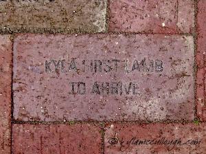 Kyla's Brick